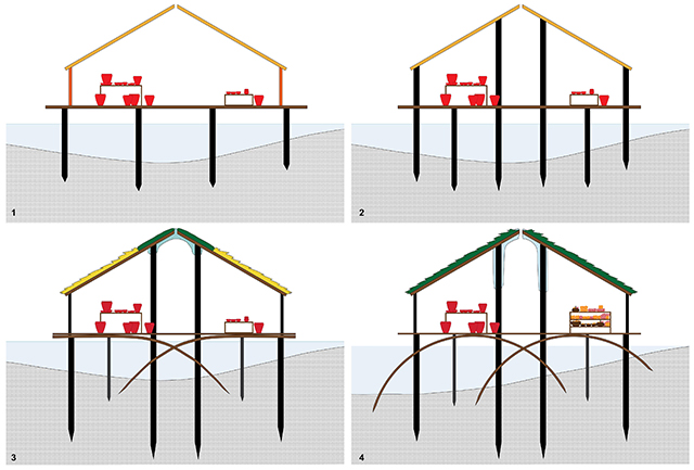 Evolution of the Structure One schematic showing how new interpretations are incorporated into illustrations