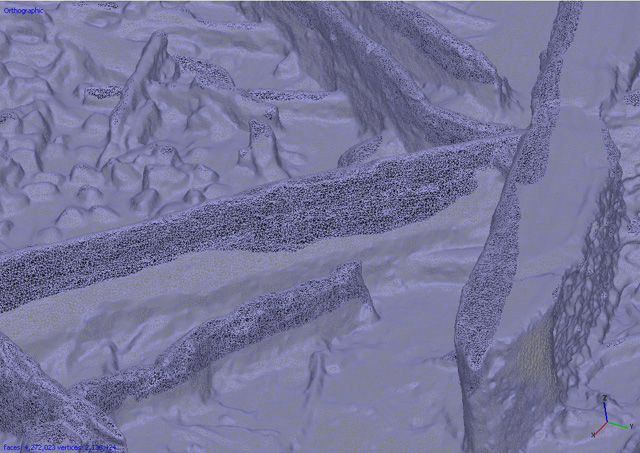 Screenshot of mesh image stage of the photogrammetry process. These are horizontal timbers from the wood mass deposit.