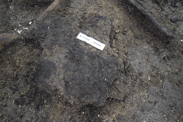 Burnt clump of turf-like material. The quantities we are finding this material in suggest a turf roof rather than a reed thatch.