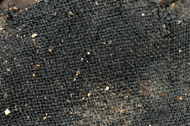 A section of beautifully preserved woven textile from beneath Roundhouse One. These fabrics have survived as they were charred in the fire that destroyed the settlement, which has carbonised the fibres.