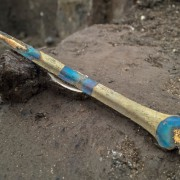 Bronze Age rapier found in river sediments linked to the causeway. The blue colouration is a result of alkaline-rich silts in the river causing a form of corrosion on the metal